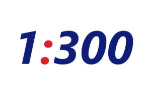 Skala 1:300