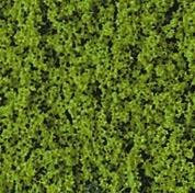 Heki 1554 Heki Flor jasnozielone 28x14 cm