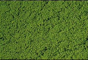 Heki 1601 Heki Mikroflor zielony 28x14 cm