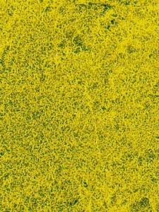 Heki 1593 Trawa żółtozielona niska 28x14 cm