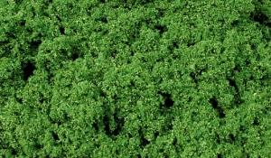 Listowie zielone na siateczce 28x14 cm