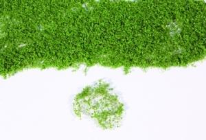 Heki realistik flor - wiosenna zieleń, 28 x 14 cm