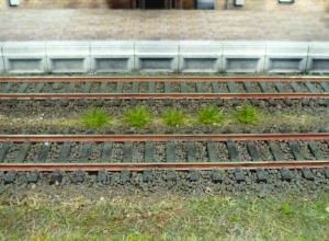 Kępy trawy letniej 5-6 mm, 100 szt.