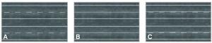 Citiline - Ulica - odcinki proste dwupasmowe