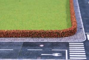 Żywopłot berberys pospolity 25 x 7 mm, 2 szt.