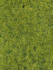 Trawa siateczka leśna zieleń 28x14 cm