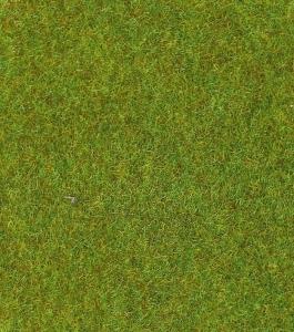 Heki 30901 Mata trawa jasnozielona 75x100 cm