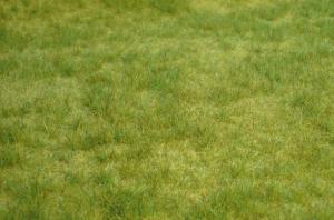 Heki 1841 Trawa wiosenna 45x17 cm