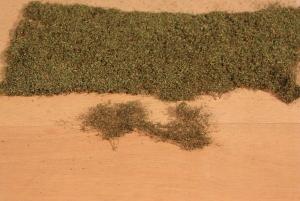 Heki 1680 Listowie jesienne zielone 28x14 cm