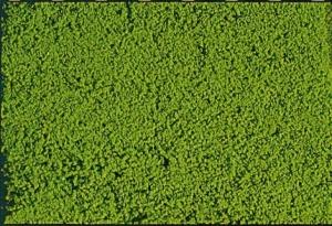 Heki Mikrolaub jasnozielony 200 ml