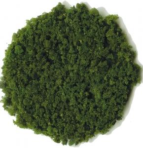 Trawa grubsza ciemnozielona 200 ml