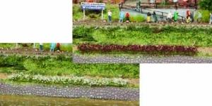 Paski trawy białej, liliowej 5-6 mm, 10 szt.