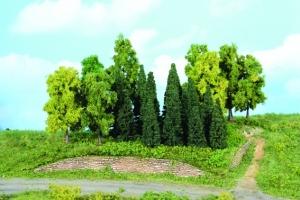 N Drzewa iglaste i liściaste 5-12 cm, 22 szt.