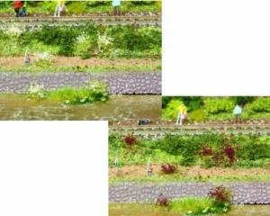 Kępy trawy białej, liliowej 5-6 mm, 100 szt.