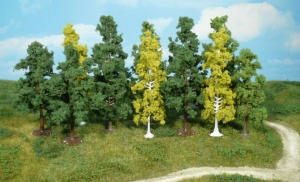 Las liściasty mieszany 7-12 cm, 12 szt.