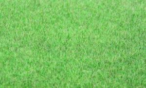 Trawa elektrostatyczna 6 mm, sucha trawa, 75 g