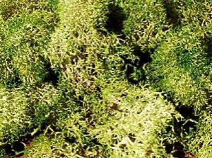 Heki 3217 Mech szaro-zielony 30 g