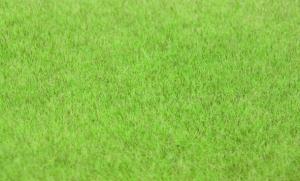 Trawa elektrostatyczna 6 mm, jesienna, 75 g