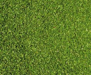 Heki 3398 Liście zielone 200 ml